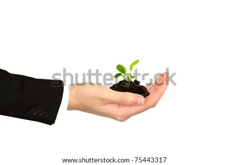 Plant in Business    hand on white background