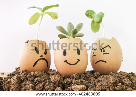 plant in egg. egg a smile and angry around on white background - stock photo