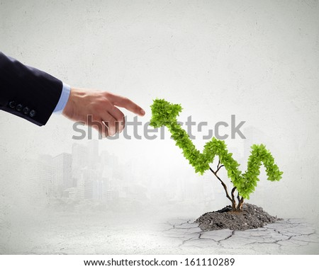 Plant in pot shaped like graph. Wealth concept - stock photo