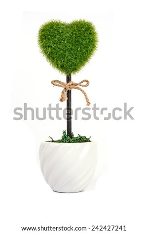 plant in pot shaped like heart  - stock photo