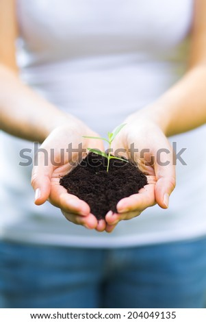 plant in the hand - ecology concept - stock photo