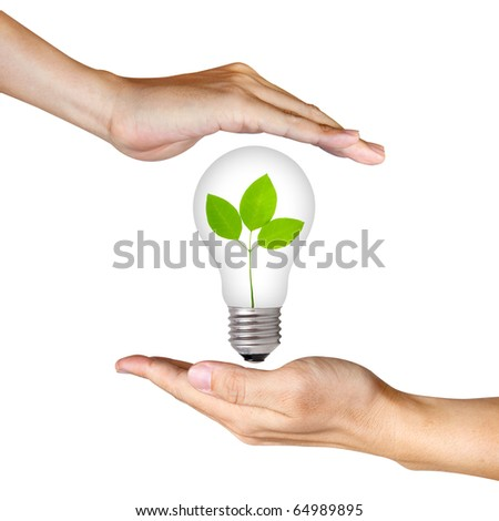 plant inside light bulb between two hands - stock photo