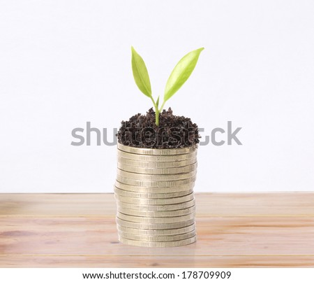 plant on gold coins and the graph them  - stock photo