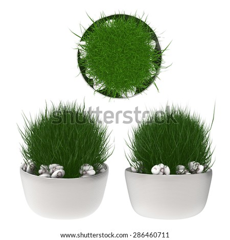 plant pot top view and side view 3d rendered on white background - stock photo
