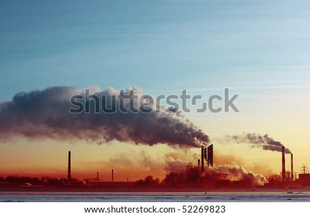Plant with smoke - stock photo