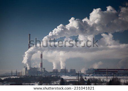 Plant with smoke at sunny winter day - stock photo