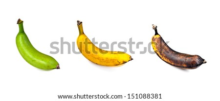 Plantain - Three Stages of Ripeness - stock photo