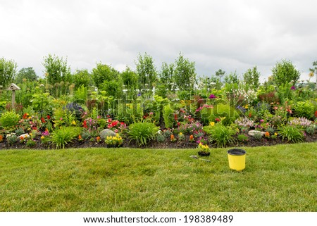 Planting a beautiful formal flower garden with a scenic view of a neatly manicured flowerbed and lawn with colorful celosia and lush green ornamental plants with seedlings ready for transplanting - stock photo