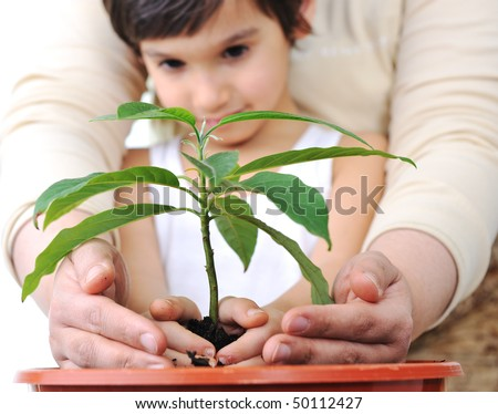 Planting a plant - stock photo
