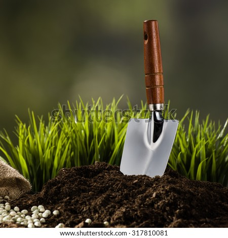 Planting a small plant on a pile of soil on green bokeh background.  Background for creative, advertising concept featuring gardening.