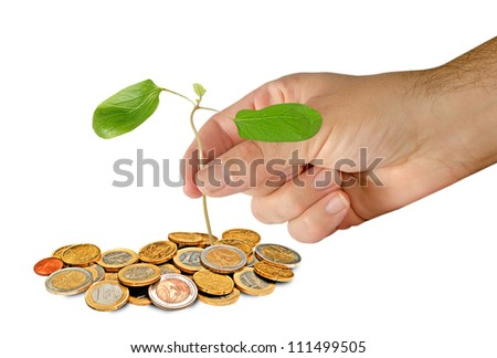 Planting castor oil tree - stock photo