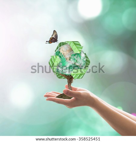 Planting eco friendly bio recycle arrow sign world tree on human hands w/ blur natural greenery:  Sustainable development CSR concept idea, saving environment: Elements of this image furnished by NASA - stock photo