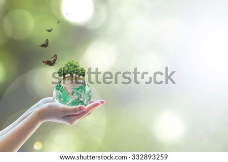 Planting eco green globe arbor tree on female human hand w/ butterfly on blurred natural bokeh background greenery: Saving environment conservation csr concept: Element of the image furnished by NASA  - stock photo
