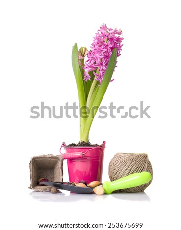 Planting Flowers. Bucket, Shovel, Seeds and Dlay Isolated on White