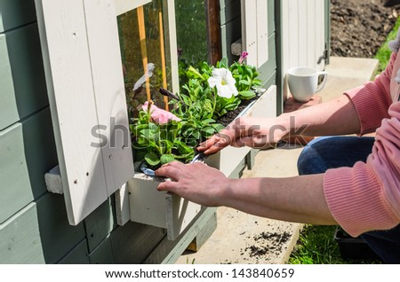 Planting Flowers in a windows box on a playhouse in Summer - stock photo