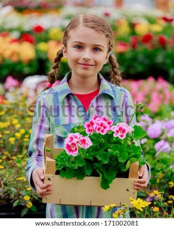 Planting, garden flowers - Lovely girl holding flowers in garden center - stock photo