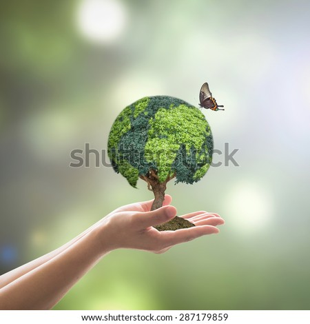 Planting green globe shaped tree on soil, female human hand w/ butterfly on blur natural background of greenery plants : Environment CSR conservation WWD concept: Reforestation & sustainable forest  - stock photo