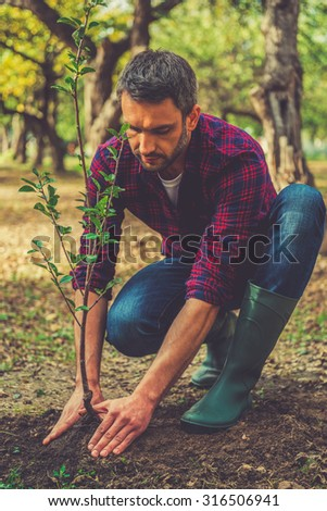 Planting new life. Confident young man planting a tree while working in the garden - stock photo
