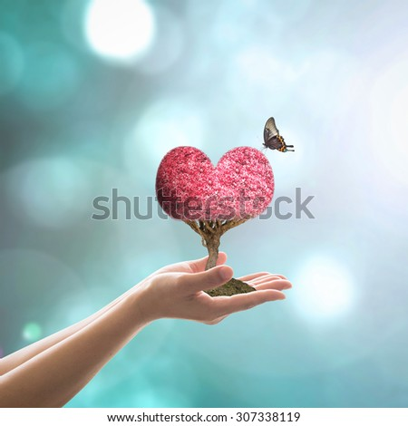 Planting red love tree shape on human hands on blurred natural background of foliage bokeh with flare in cool blue pastel vintage color tone: Woman holding heart tree with butterfly in trust/ intimacy - stock photo