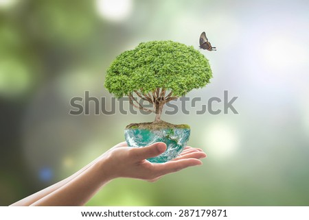 Planting tree in green globe on female human hands with a butterfly on blurred natural bokeh background of greenery : Environment conservation concept : Elements of this image furnished by NASA  - stock photo