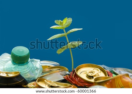 Plantlet growing on a garbage dump over blue background. Recycling. - stock photo