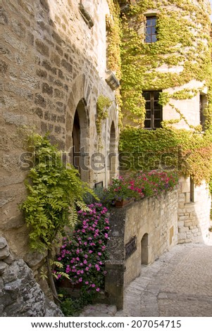 Plants and flowers growing on a small hillside street in a French village