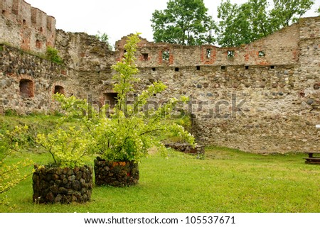 Plants and stones on a background of an old wall of a castle