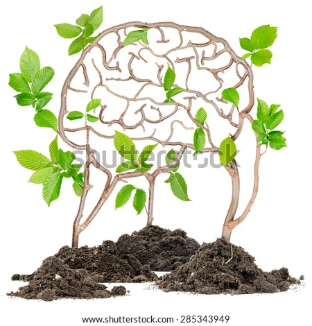 Plants growing from soil heaps forming brain - stock photo