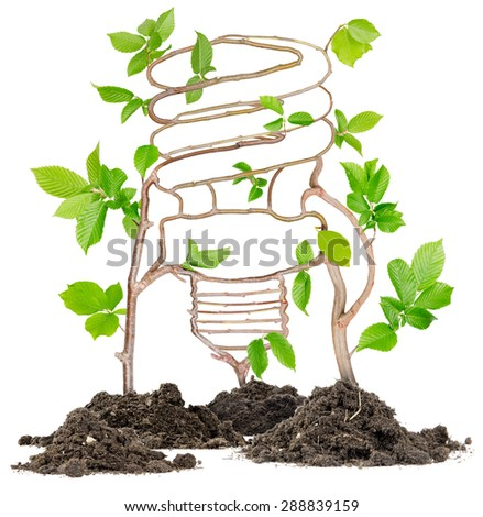 Plants growing from soil heaps forming energy saving light bulb - stock photo