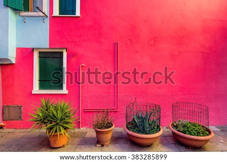 Plants in-front of red facade of houses on the famous island Burano, Venice, Italy - stock photo