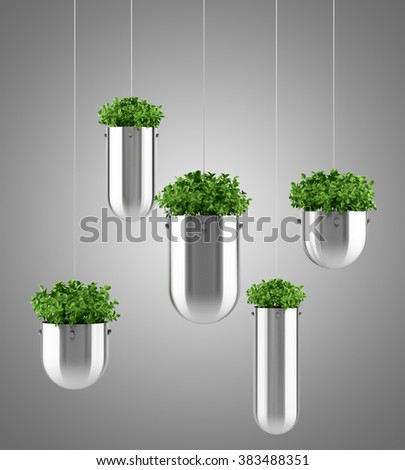 plants in hanging pots isolated on gray background - stock photo