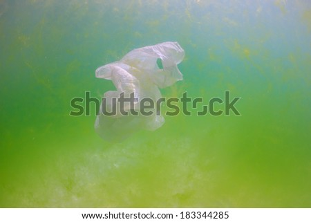 Plastic bag floating underwater surrounded by green algae.  Manmade pollution is having a drastic effect on the ocean ecosystems - stock photo