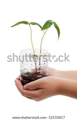 plastic bottle and Sprout with white background - stock photo