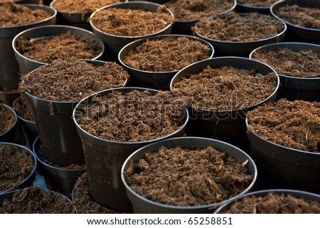 Plastic flower pots with ground soil, close up image - stock photo