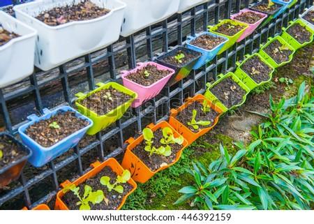 Plastic flowerpot with seedling - stock photo
