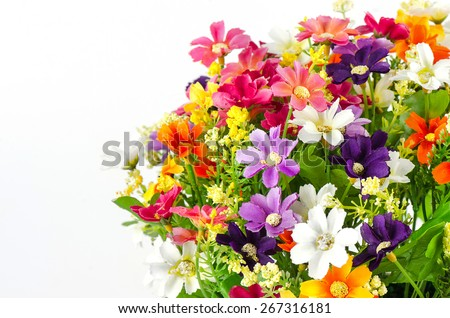 Plastic flowers isolate on white background, Fake flowers. - stock photo