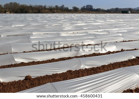 Plastic greenhouses in the cultivated field in spring - stock photo