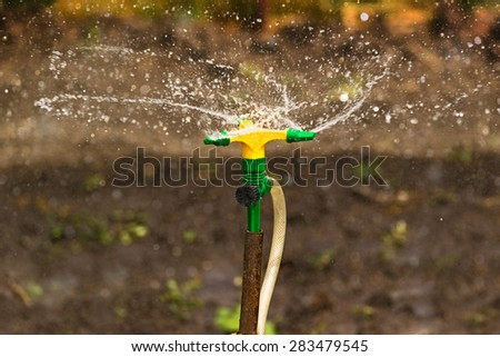 Plastic Home Gardening Irrigation Sprinkler in Operation on Cultivated Agricultural Garden - stock photo