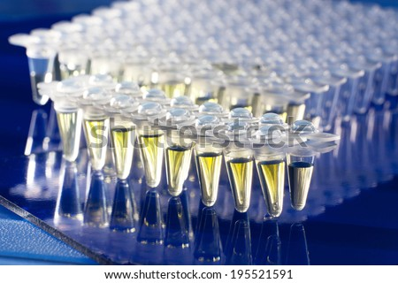 Plastic tubes for DNA amplification  - stock photo