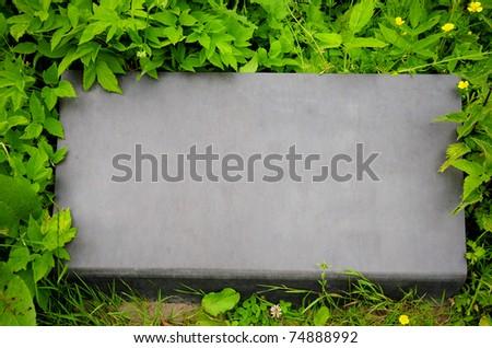 Plate grass stone - stock photo