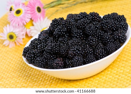 Plate of blackberries - stock photo