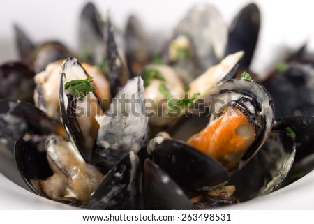 Plate of fresh mussels with garlic sauce isolated on white background - stock photo