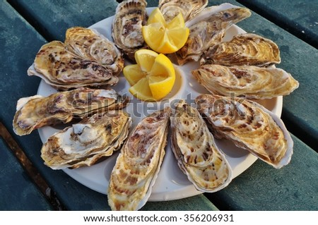 Plate of freshly shucked oysters in Brittany, France - stock photo