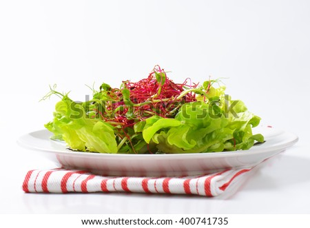 plate of green salad with pea and beetroot sprouts on striped dishtowel