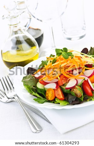 Plate of healthy green garden salad with fresh vegetables - stock photo
