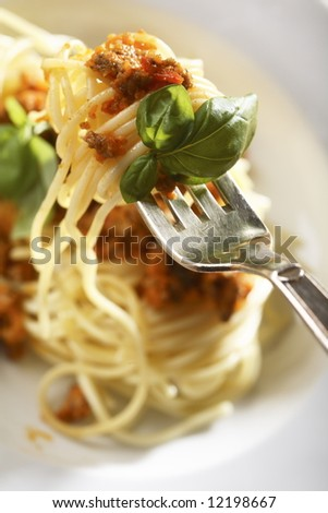 plate with Spaghetti Bolognese