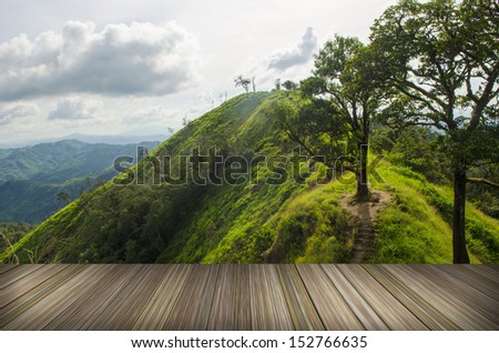 platform beside natural field, Tropical forests in Thailand - stock photo