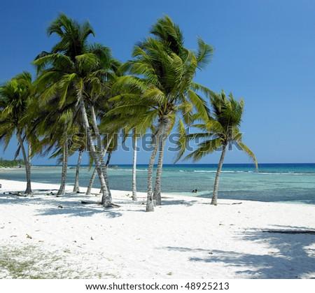 Playa Giron, Caribbean Sea, Cuba - stock photo