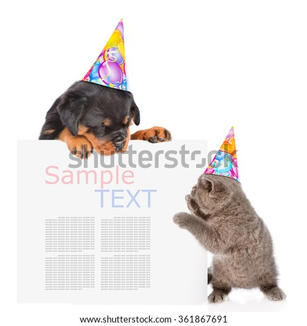 Playful cat and rottweiler puppy in birthday hats peeking from behind empty board. isolated on white background - stock photo