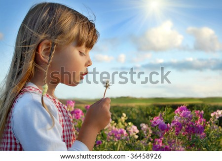 Playing on meadow - stock photo